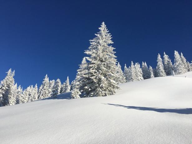 Traum Winterlandschaft Berge erleben